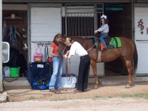 Stalls with individual tack rooms.jpg