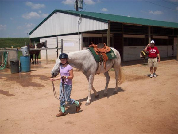 25 Lesson Horses for our students.jpg